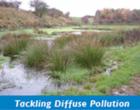 Tackling diffuse pollution pic