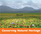 Conserving natural heritage