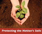 Protecting soils